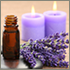 Mobile Aromatherapy Services, Cambridge, Ely, Newmarket